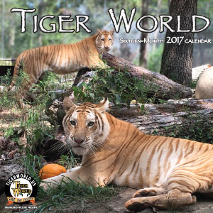 Tiger World Calendar is Here!
