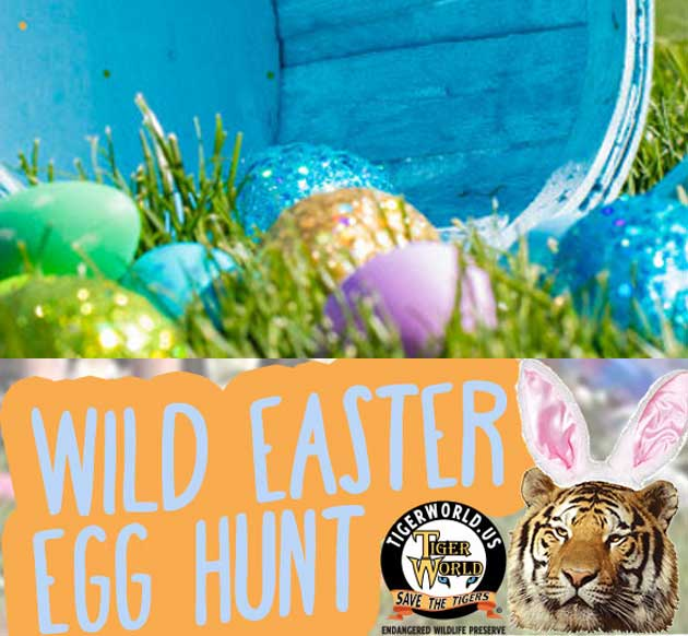 Join us for our Wild Easter Egg Hunt